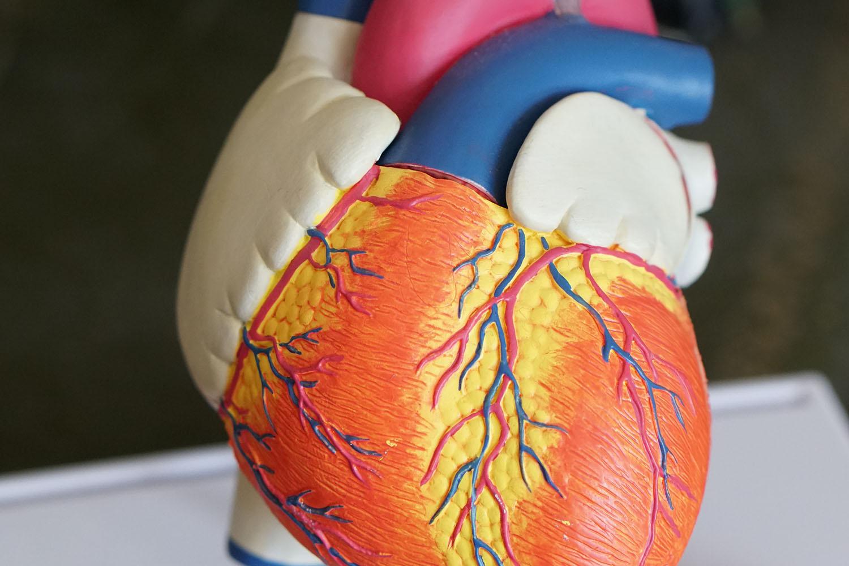 Het innemen van medicatie is cruciaal bij hart- en vaatziekten